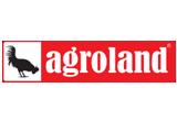Global-Language-Companii-Limbi-straine-agroland-Timisoara
